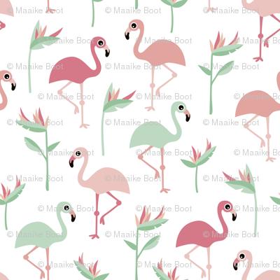 Birds of paradise botanical flower garden and flamingo beach Hawaii summer theme pink mint jumbo