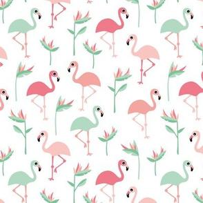 Birds of paradise botanical flower garden and flamingo beach Hawaii summer theme pink mint