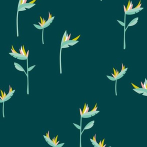 Birds of paradise botanical flower garden Hawaii summer minimal teal mint mustard