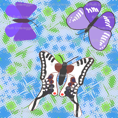 Friendly butterflies-fly-over-ground