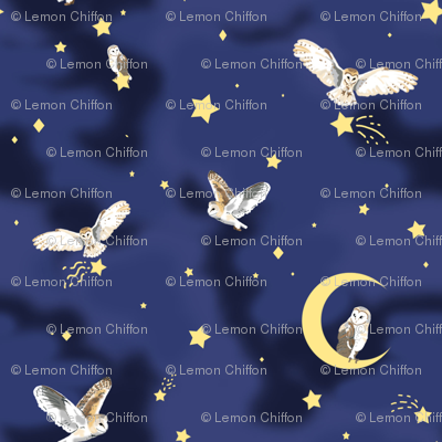 Starry Owls