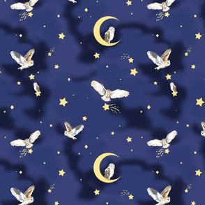 Rstarry_owls2_shop_thumb