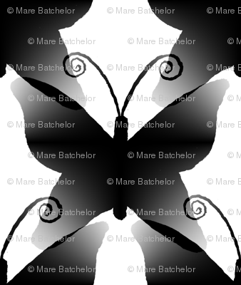 Giant Black Butterfly