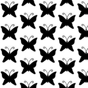 Black Butterflies - medium