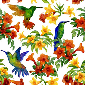 hummingbirds (large scale)