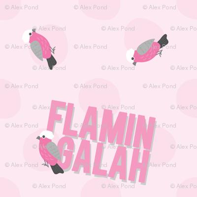 Ya Flamin' Galah