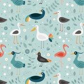 Rwading-birds_shop_thumb