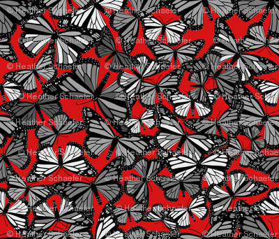 Grey Butterflies on Red
