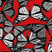 Rbutterflies-on-red_shop_thumb