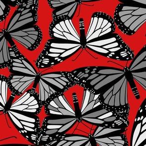 Grey Butterflies on Red