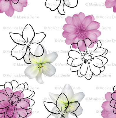 white, pink and black flowers