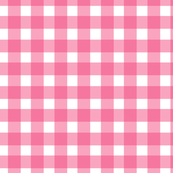Gingham Check in The Hottest Pink