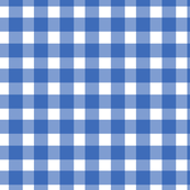 Gingham Check in Cobalt