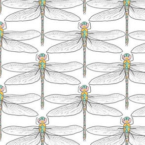 Dragonflies for Swallows (white) N2