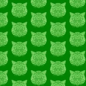 Green Tabby Cat Pattern