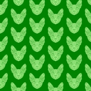 Green Sphynx Cat Pattern