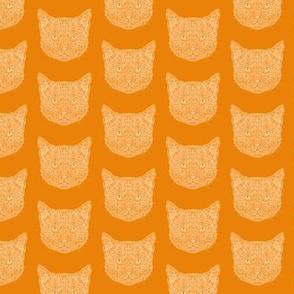 Ginger Tom Cat Pattern