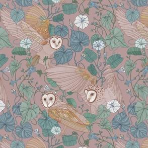 Pink barn owl