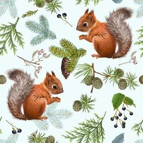 Branches and squirell