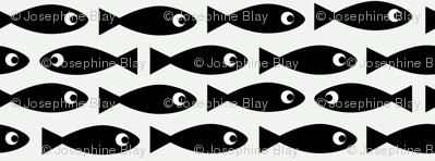 Little fish on white