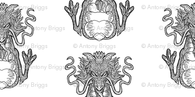 Dragon Pattern - White Background