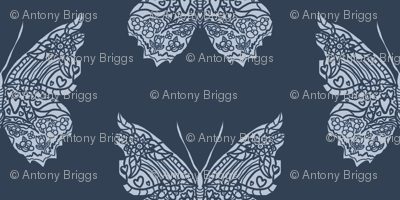 Navy Butterfly Pattern