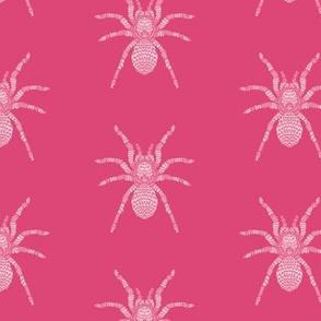 Pink Tarantula Pattern