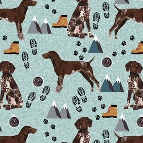 german shorthair pointer hiking dog breed fabric bluish