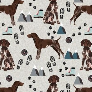 german shorthair pointer hiking dog breed fabric grey