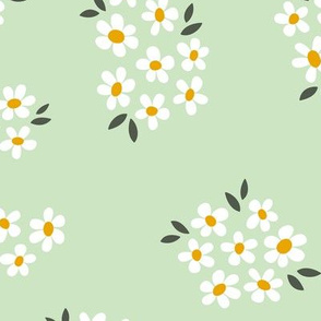 Daisy Field in Mint