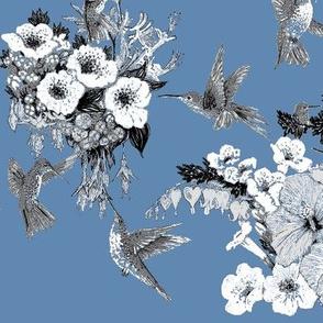 Azure, White & Gray Humming Bird
