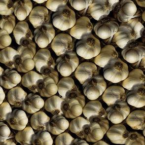 Garlic Pattern