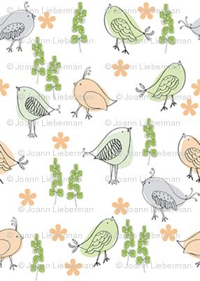 Birdybaby