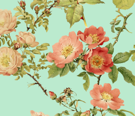 Watercolor English Rose ~ Arsenic   fabric by peacoquettedesigns on Spoonflower - custom fabric