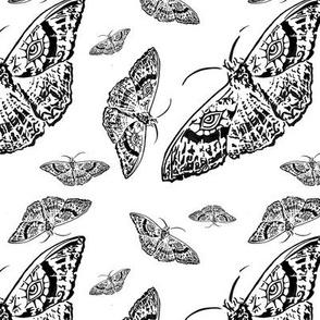 Moth Cloth (Black and White)