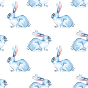 White rabbits 3