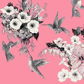 Coral Pink, Cream & Gray Humming Bird