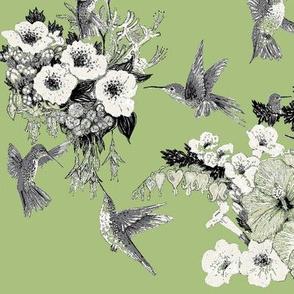 Herb Green Cream & Gray Humming Bird