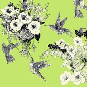 Bright Lime, Cream & Gray Humming Bird