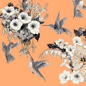 Tangerine, Cream & Gray Humming Bird-ch
