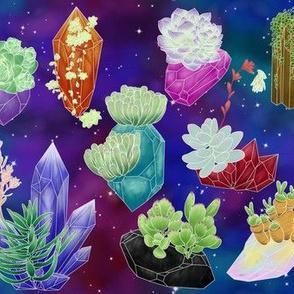 Crystal Succulents - Galaxy