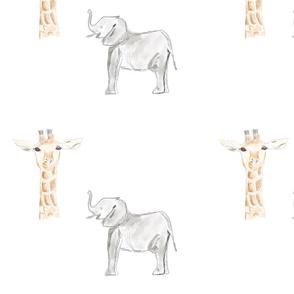 Baby Elephant & Giraffe