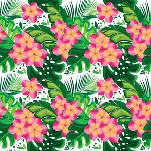 Blossoming tropics