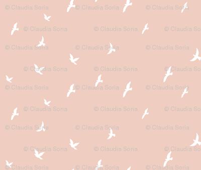 Birds - Blush
