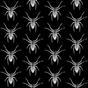 Tiny Spiders, Silver Gray on Black