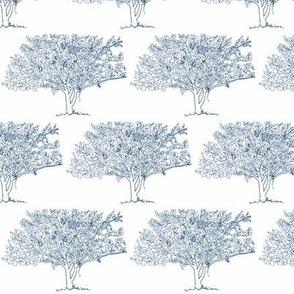 Dogwood Tree_Navy on White