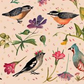 Rrrbirds-and-wildflowers-small-scale_shop_thumb