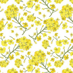Floral Love of Mustard