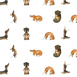 Dachshund Sausage Dog Yoga Inga SmG