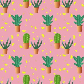 Cactus and lemon